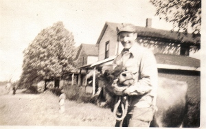 Third Street, Wheatland, PA, c. 1946. August Angel with cow.
